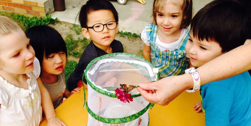 five preschoolers looking at a butterfly on a flower.